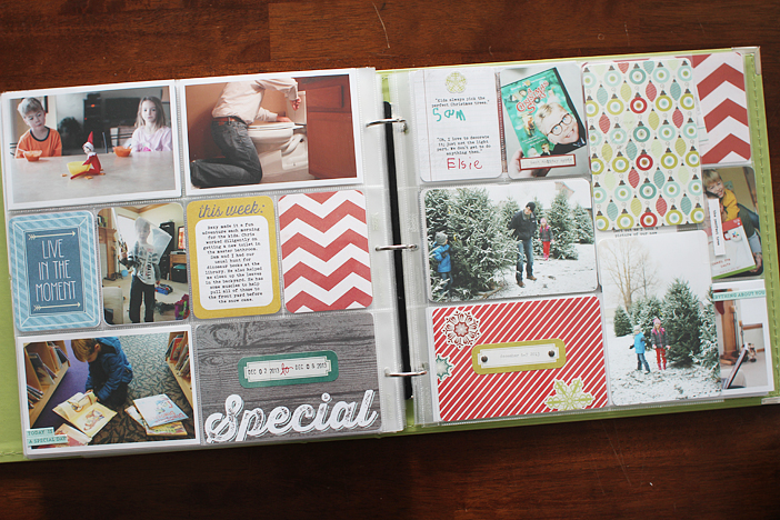{365} Project Life 2013 | Week 49 by Shelly Jaquet