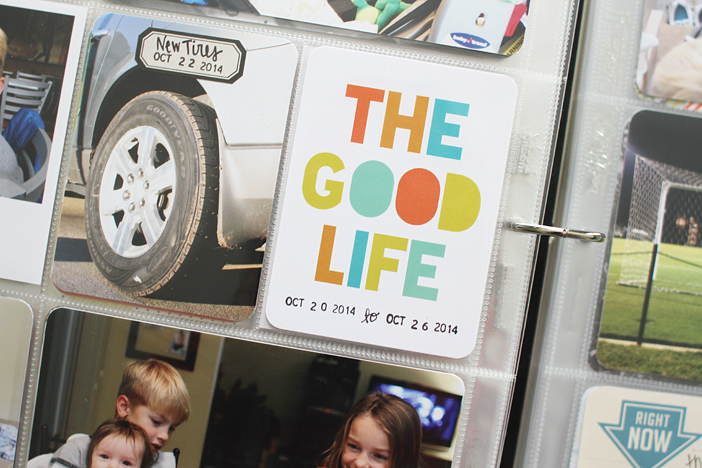 {365} Project Life 2014   Week 43 by Shelly Jaquet